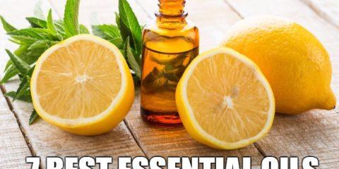 7_Best_Essential_Oils_Health_Organic_Health