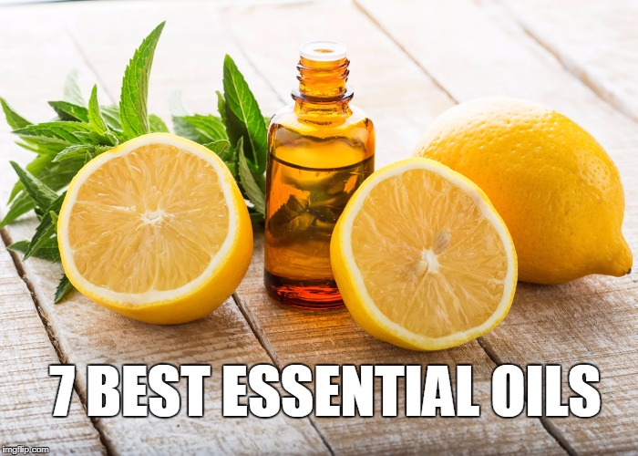 7_Best_Essential_Oils_Health_Organic_Health