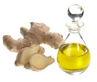 ginger-essential-oil